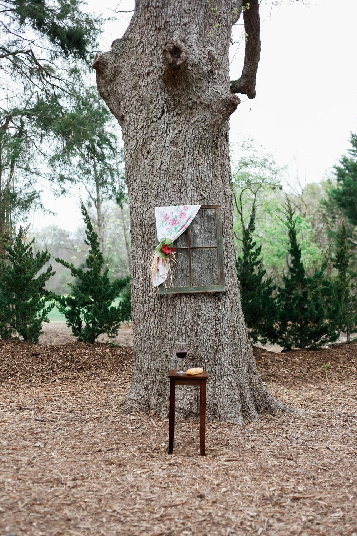 kate and daniel- chandlers gardens- dallas fort worth wedding photographers-30.jpg