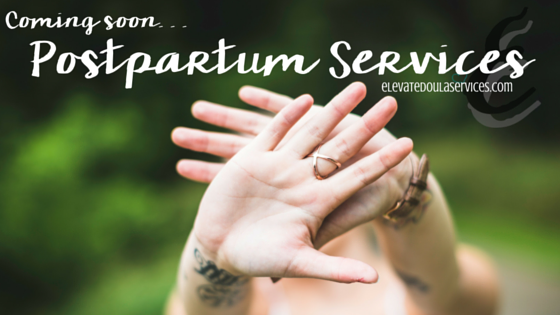 elevate-doula-services-postpartum