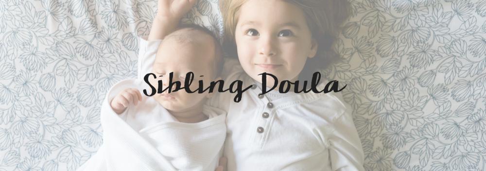 sibling-doula-michiana