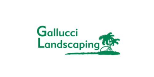 Landscaping marketing ideas in Austin TX