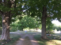 Continue down the maple-lined road to the circle, then turn right down the dirt road and take the next left. In Only a short distance you will see the grave on your left.