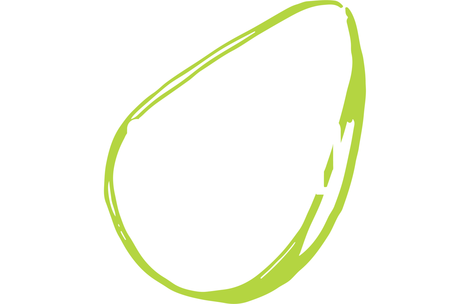 Avocados Restaurant