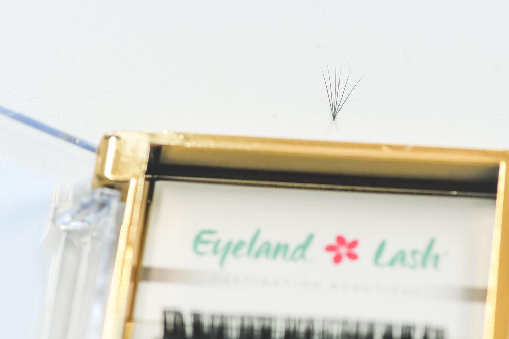 eyelandlash-98.jpg