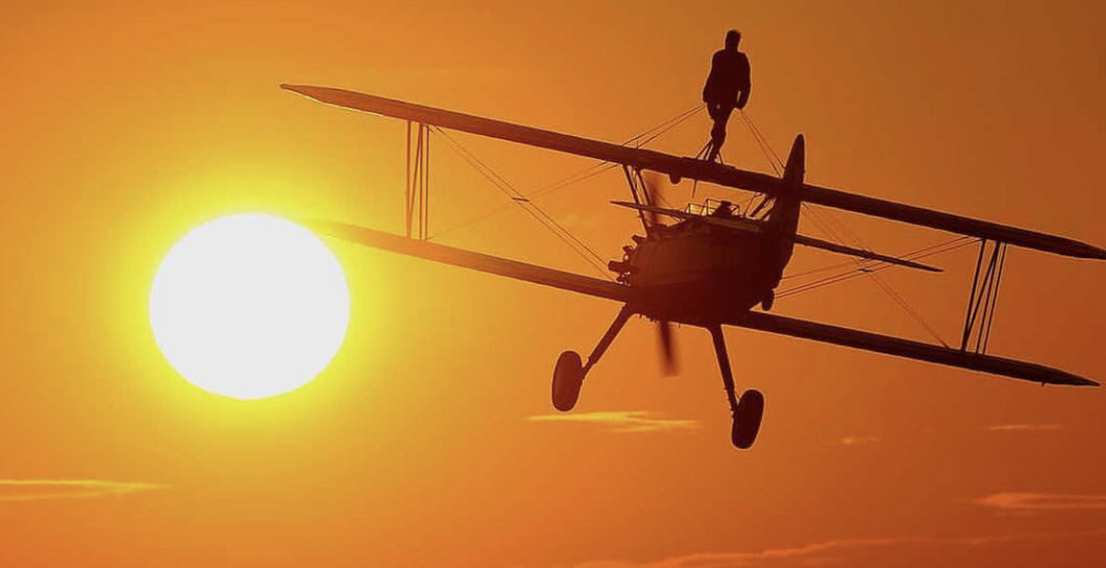 The Wing Walk Company.jpg