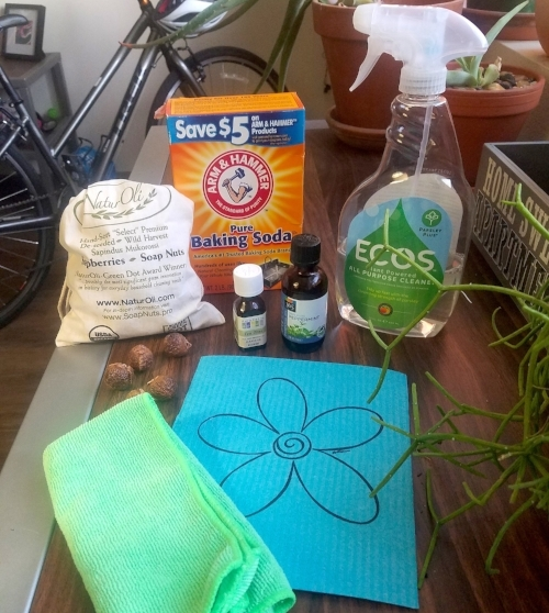 Some eco-friendly cleaning products from editorial board member Marley's home. What can you use to clean smarter in your home this March?