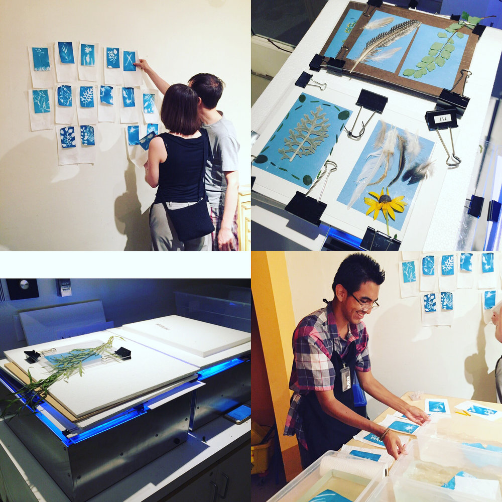 Mia Sun Print Cyanotype Class with Emma Freeman