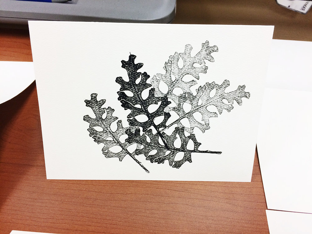 BotanicalNotecardsClassEmmaFreeman