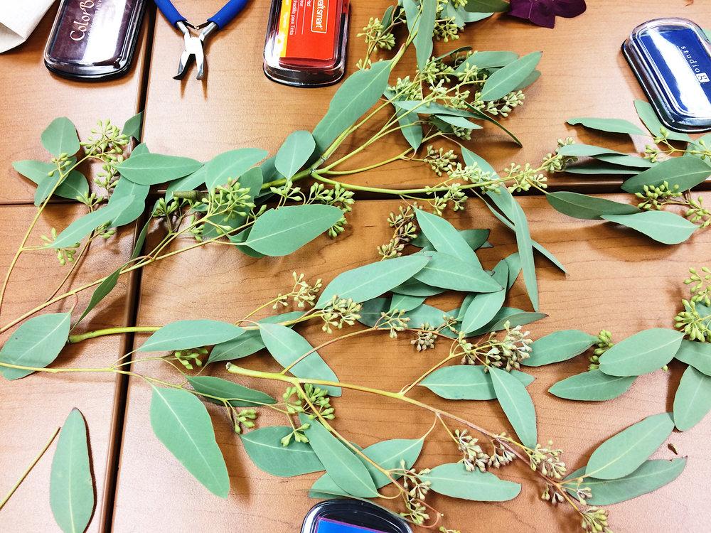 BotanicalNotecardsPrintingEucalyptus