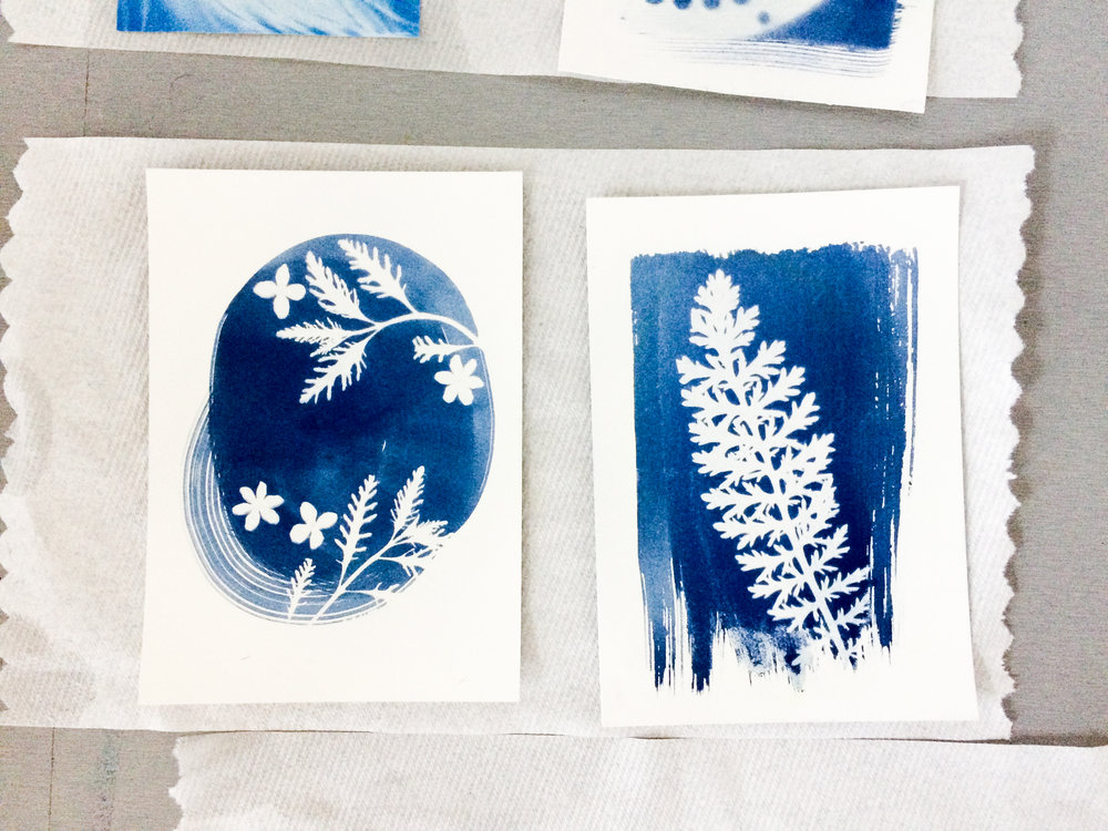 Student work from my Intro to Sun Printing Class