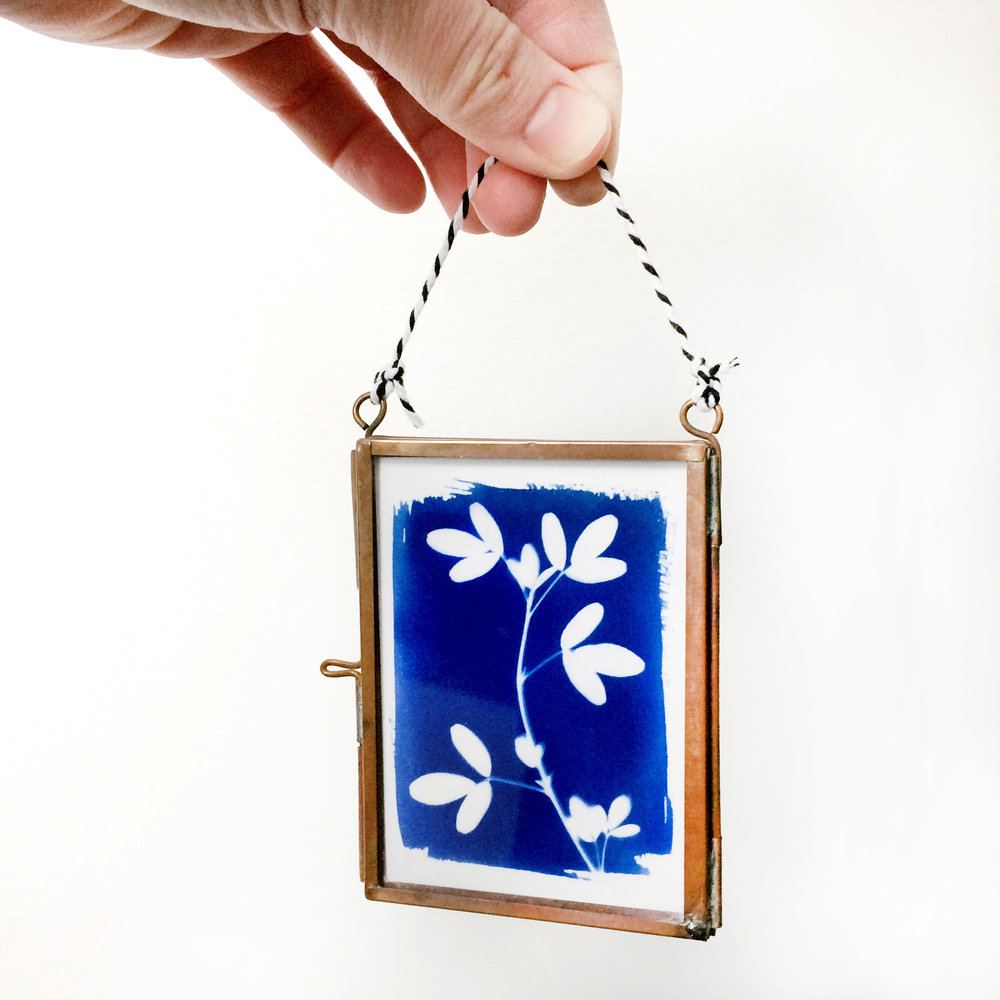 Tiny Cyanotype Art by Emma Freeman Designs