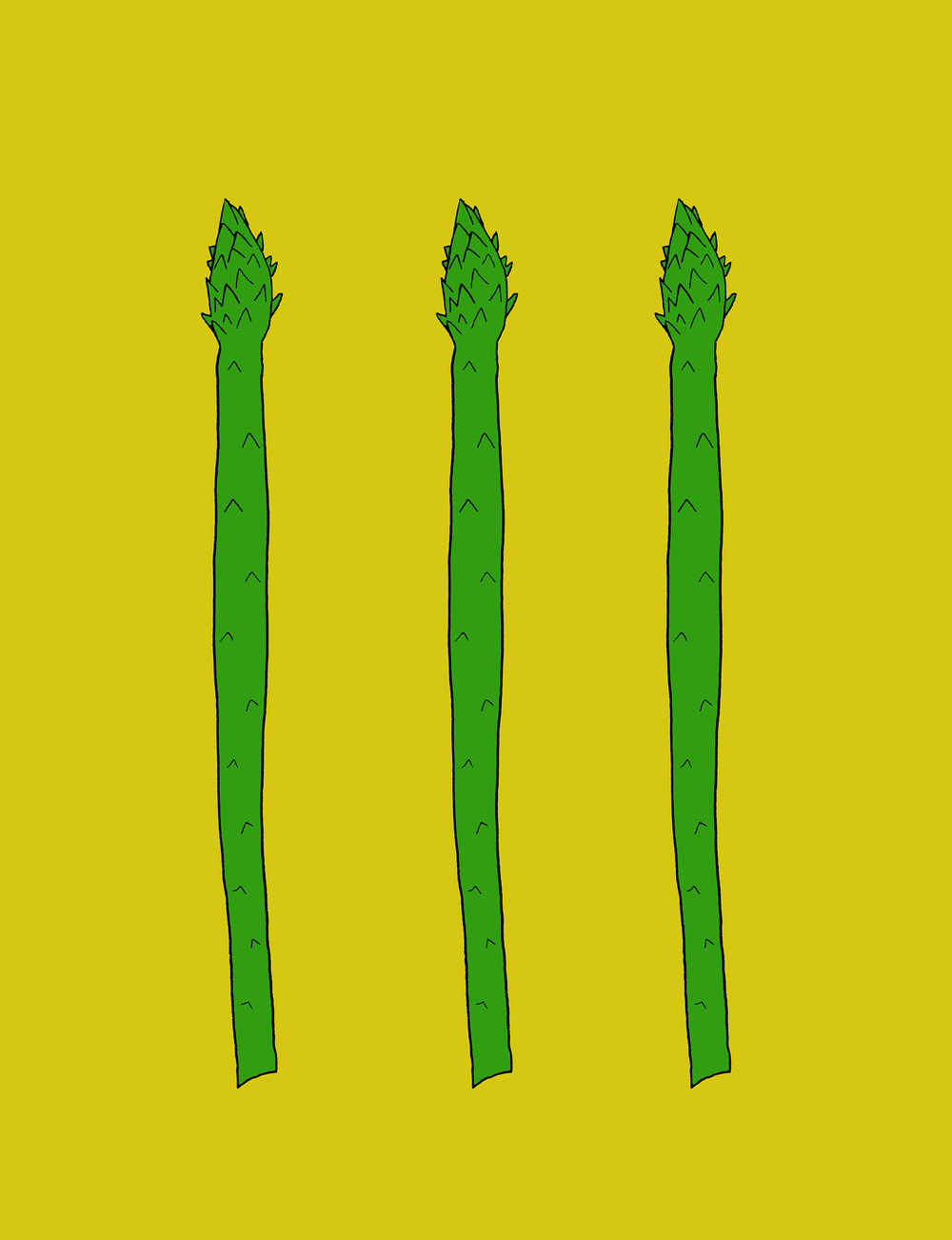 Asparagus Illustration by Emma Freeman Designs