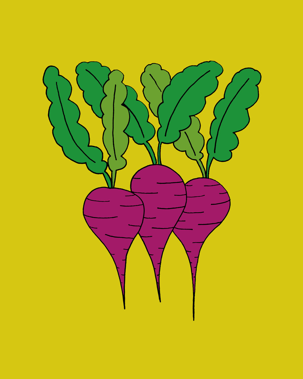 Beets Illustration by Emma Freeman Designs