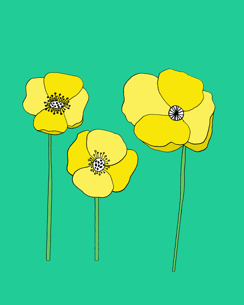 Teal and Yellow Poppies_low res.jpg