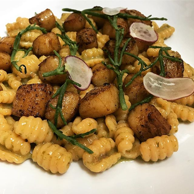 We're bACK at it again.  New pasta tonight. Candied Nantucket Bay scallops, seaweed pesto, hazelnuts, sea beans and radishes, Fresno chili cavatelli. #scallops #nantucket #bayscallops #aplomb #arcobaleno #pasta #gnochisardi