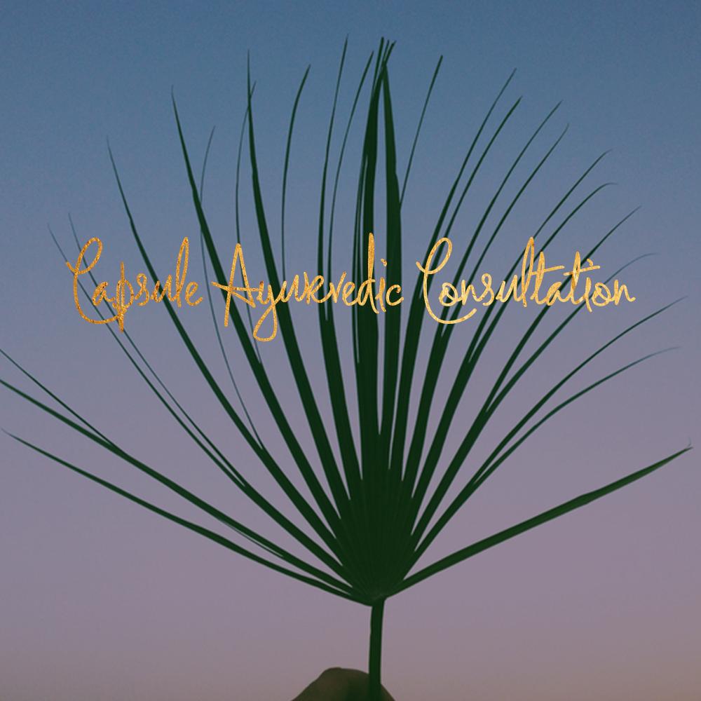 palm leaf-2.jpg