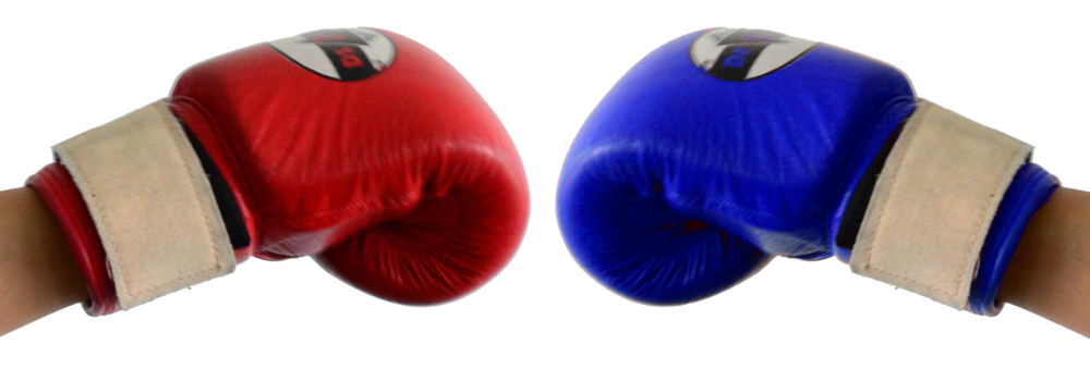 2 boxing gloves.png
