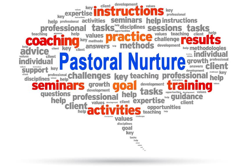 Pastoral Nurture.jpg