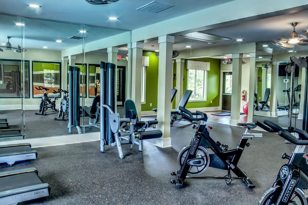 Gym-EccoB.jpg