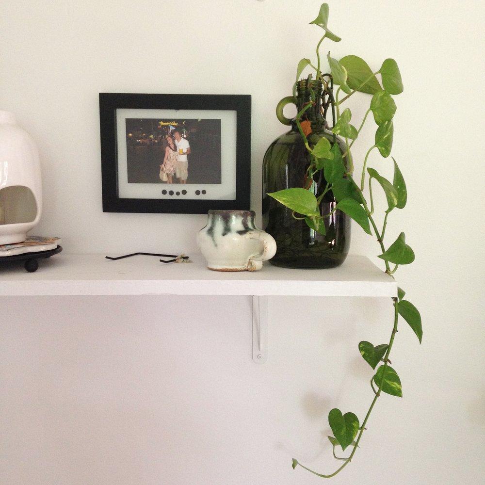 Long white shelves in dining room