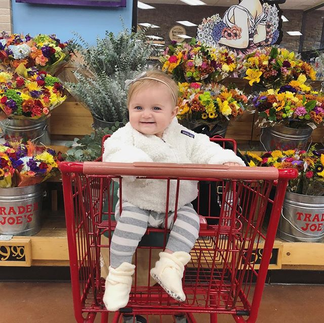 Annie's first time in a shopping cart. For Jay, swipe! 💕