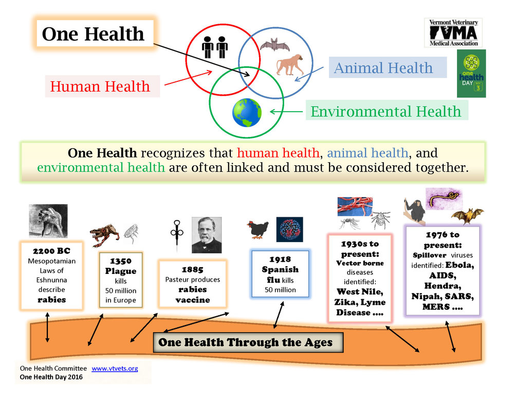 VVMA One Health Day Infographic