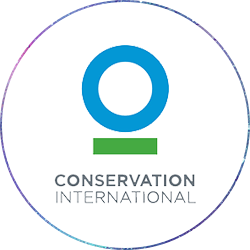 Conservation International partners with Osom Brand