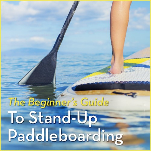The-Beginners-Guide-To-Stand-Up-Paddleboarding-500x500.jpg