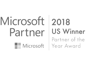 2018 US Winner Partner of the Year Award100.png