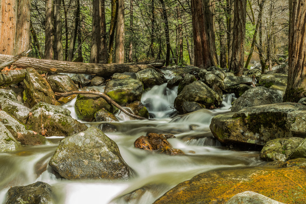 Bridalveil Creek, Yosemite National Park