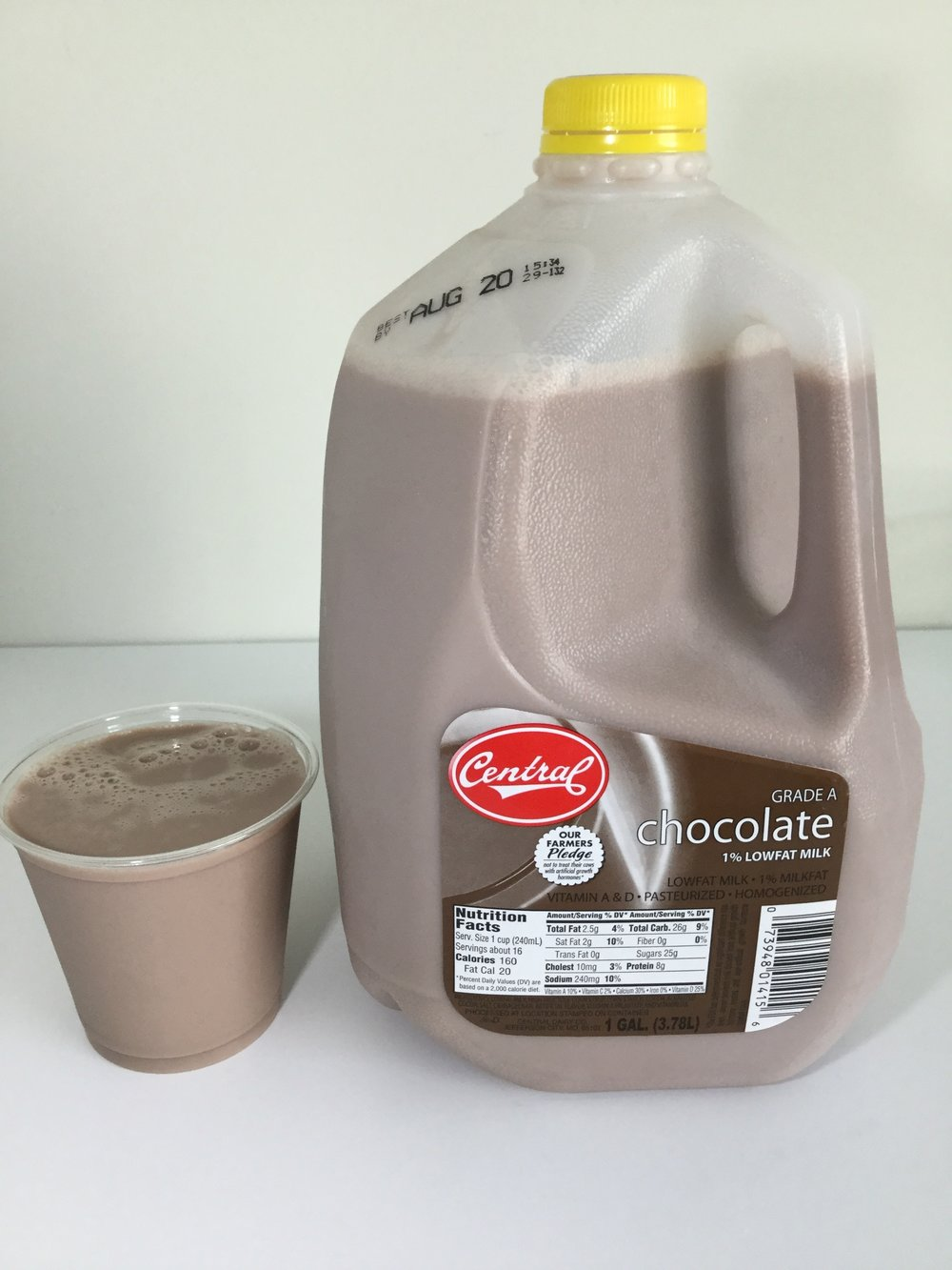 Central Dairy Low Fat Chocolate Milk Cup