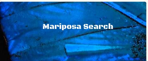 Mariposa Search