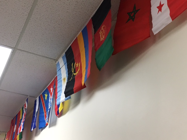 A few of the many flags representing the nations helped by MedShare.