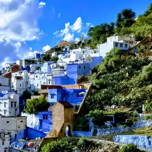 "The ""Blue City"" has been super chill  #chefchaouen #bluecity #morocco #wanderlust #backpacking"