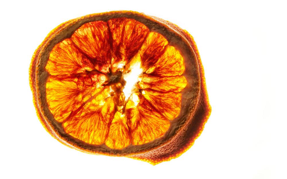 DryFruit1563_Orange.jpg