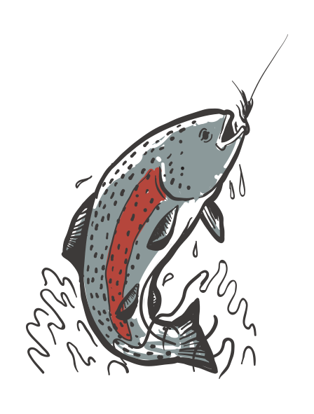 RainbowTrout.png