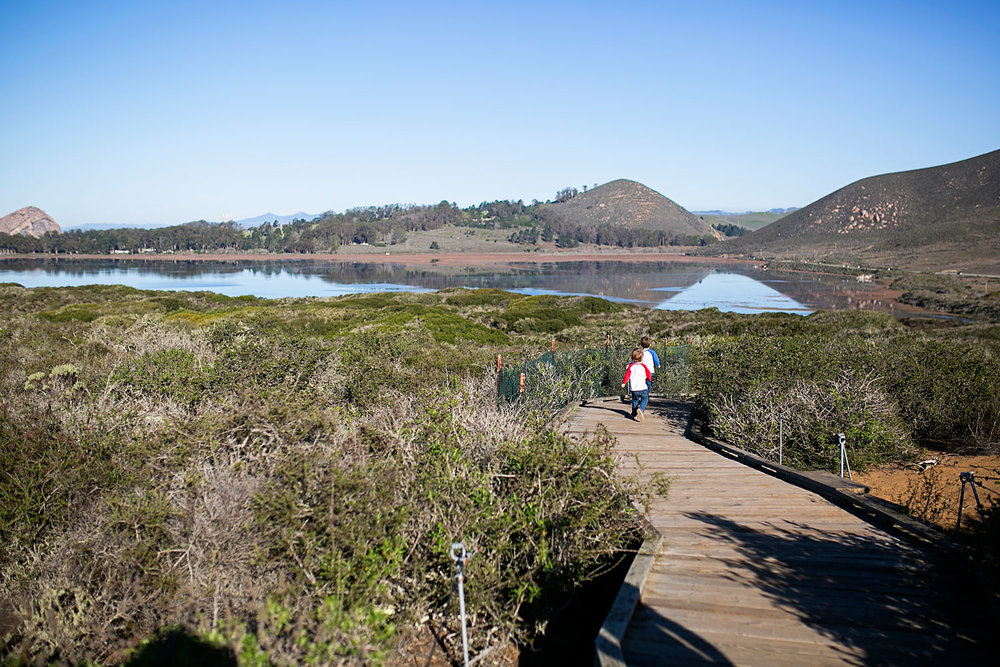 Elfin Forest, Morro Bay California, Amy Wright Photography
