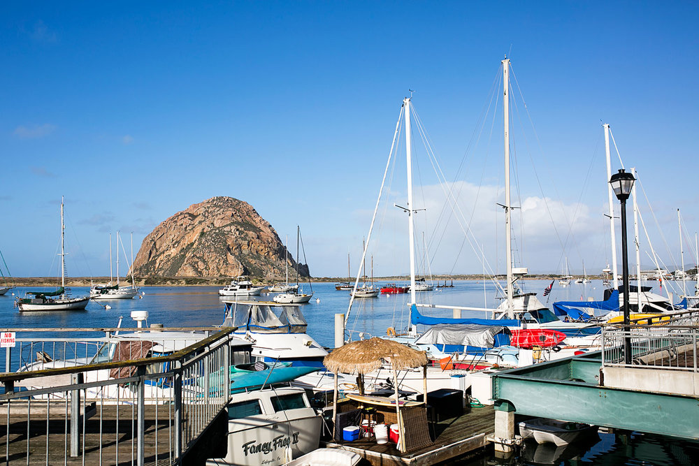 Morro Rock, Morro Bay, Amy Wright Photography