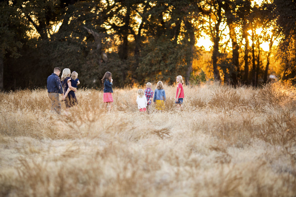 Family of Eight, Amy Wright Photography, Sacramento Family Photographer