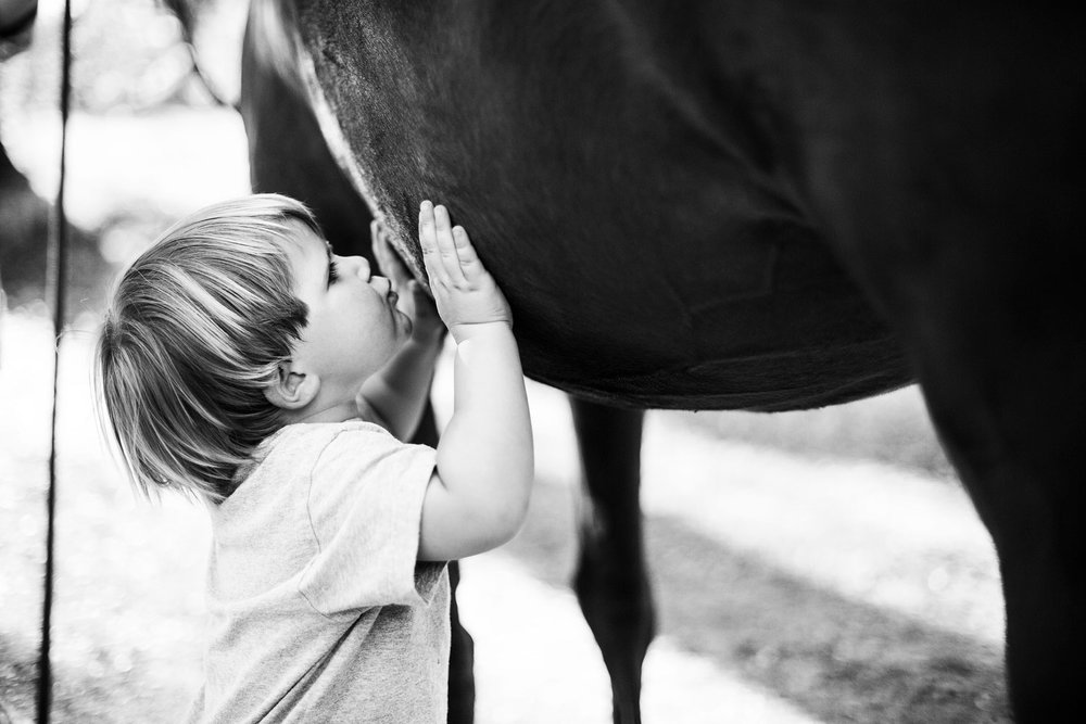 A boy kisses a horse during a lifestyle photo session with Amy Wright Photography in Sacramento, California.