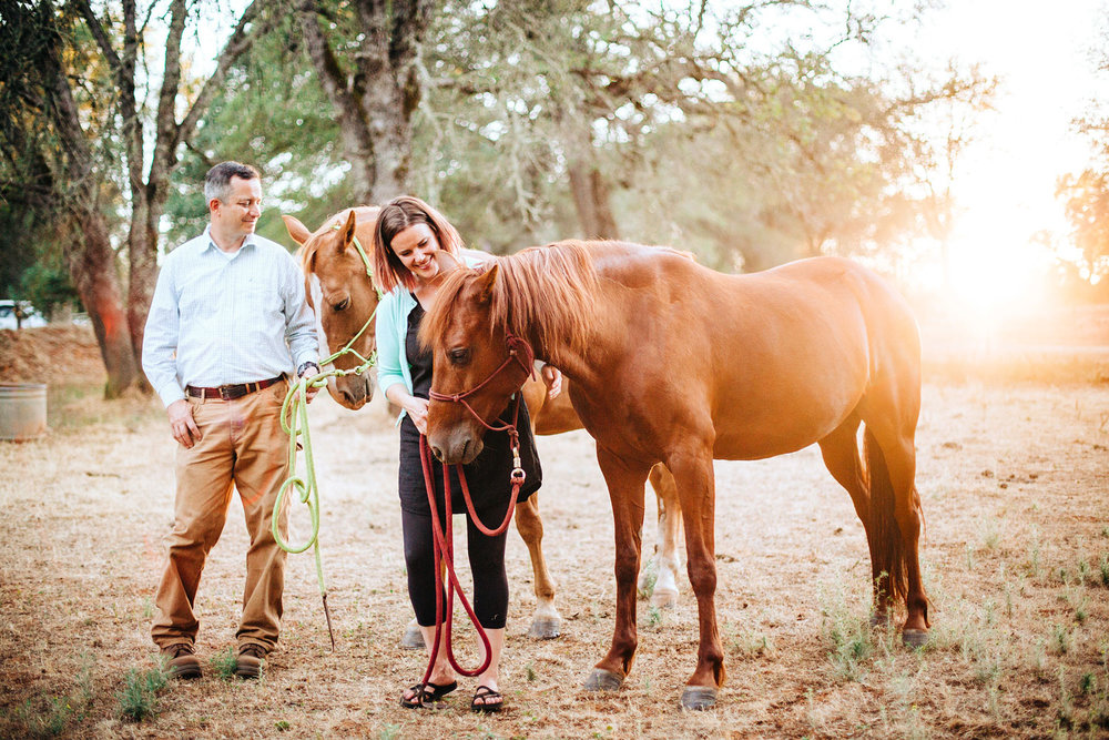 A couple interacts with each other and their horses during an in-home family photo session in Sacramento, California with Amy Wright Photography.