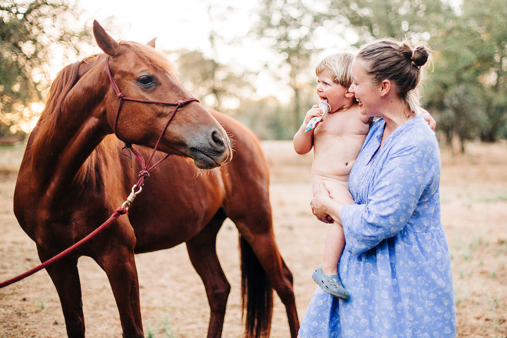 A mother and son interact with a horse during an in-home lifestyle family photo session in Northern California with Amy Wright Photography.
