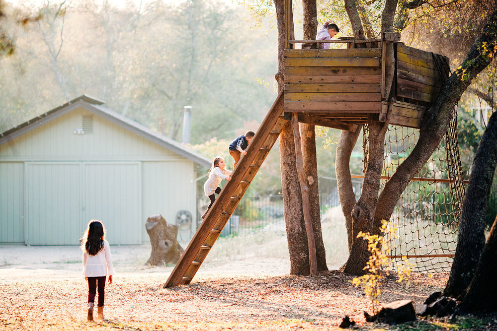 Four siblings climb up their backyard treehouse during an easy going lifestyle family photo session with photographer Amy Wright in Roseville, California.
