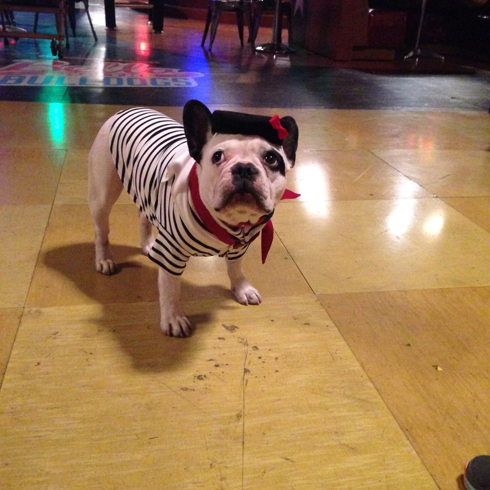 Good dog Oliver!