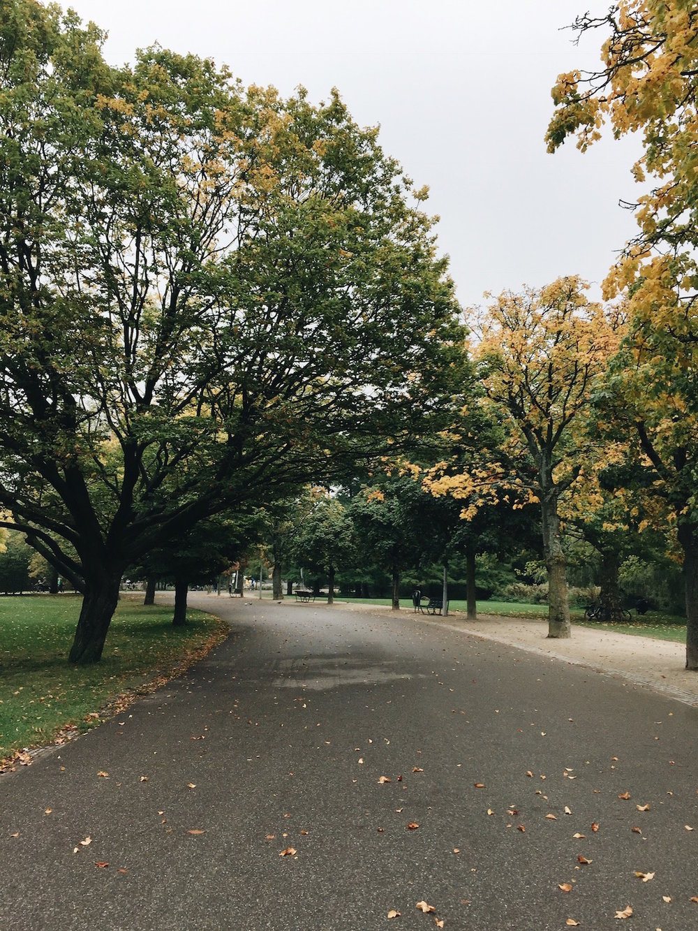 The beautiful escape that is Vondelpark. It doesn't get much better than this.