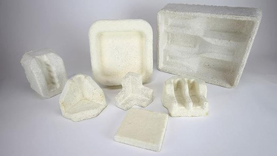 champignon ersatz plastique.jpg