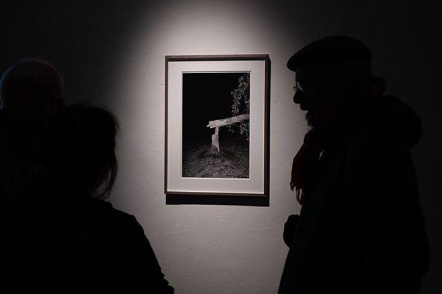"""Julius von Bismarck - Tree Analysis, 2013 - Fine Art Print and Video - #impact #kunstverein #regensburg #juliusvonbismarck Special thanks to @alexanderlevygallery - Mit Naturgewalten setzt sich auch Julius von Bismarck, der ebenfalls bei Olafur Eliasson studierte, auseinander. Das achtstündige Video """"Baumanalyse"""" (2013) zeigt wie der Künstler mit der rechten Hand am Stamm einer Eiche entlang streicht. Die tastende Geste entpuppt sich als allmähliche Verletzung der Natur, denn von Bismarck hält ein Taschenmesser in der Hand und trägt einen Jahresring nach dem anderen ab. Seine gleichmäßige Bewegung hinterlässt einen ringförmigen Pfad am Boden und rückt die Eiche noch deutlicher ins Bildzentrum. Der stundenlange Zweikampf zwischen Mensch und Natur scheint unentschieden. Erst am Ende der täglichen Ausstellungsöffnungszeit gibt der Baum nach und fällt. Der Kreis wird zum Sinnbild für den ewigen Lauf von Werden und Vergehen. Metaphorisch kappt der Künstler sowohl ein deutsches Nationalsymbol, als auch seine eigene Ahnengeschichte, denn die Eiche ist traditionell mit dem Wappen der Familie von Bismarck verbunden. Der Künstler bringt also im wörtlichen Sinne seinen Stammbaum zu Fall. Text: Lydia Korndörfer - The  exhibition will be on view until January 6, 2019, Tuesday's to Sunday's from 12 - 6pm."""