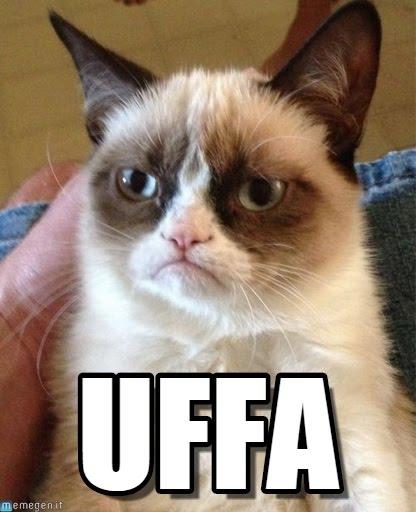 The universality of Grumpy Cat meme has no need for Esperanto.