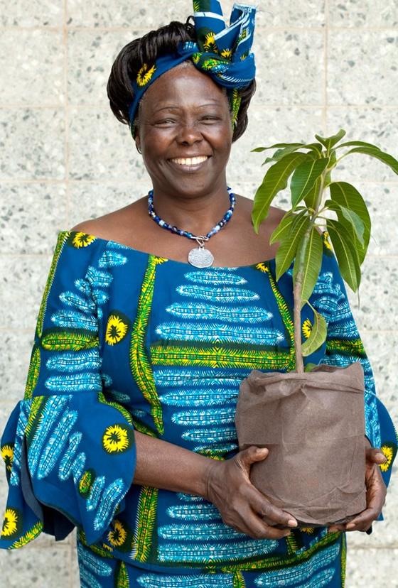 Kết quả hình ảnh cho Wangari Maathai (1940-2011)