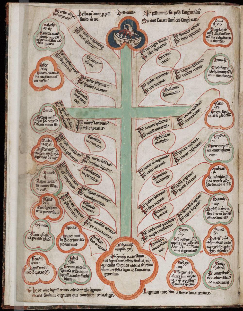 Tree Of Life World Tree Iconography Allcreation