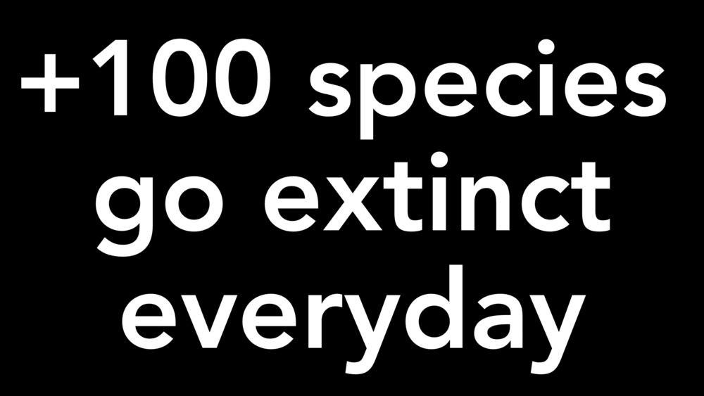 The current expansion of humanity is destroying life at least 10X faster than when the dinosaurs went extinct. We can reverse that, but we must get started en masse.